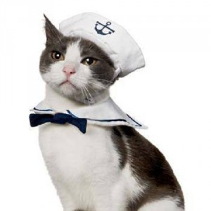 sailor_kitty